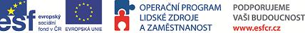 logo_evs