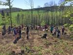 stromky-skalky-2018-04-21-3.jpg