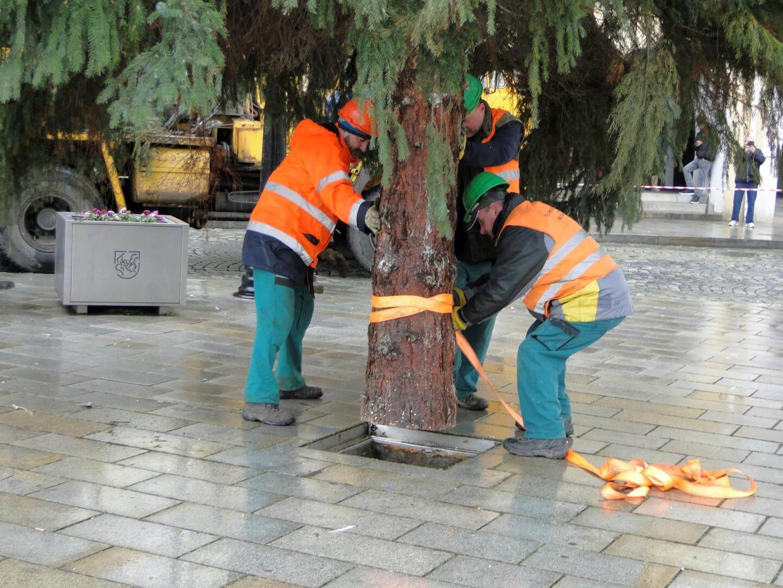 vanocni-strom-2017-4.jpg